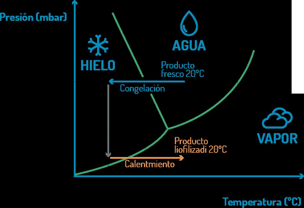En Barnalab te explicamos qué es la liofilización, un proceso de secado suave y deshidratación de alimentos que se realiza en un equipo de liofilización